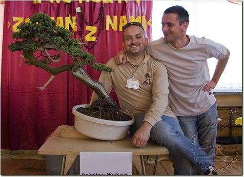 http://bonsai.kamcio.com/2009/zdjecia/bild_13.jpg